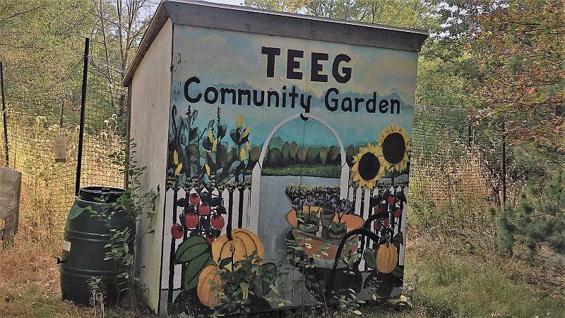 TEEG-Community-Garden